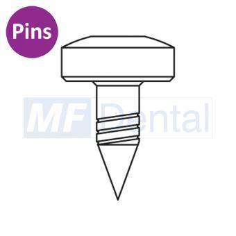 Knochennägel (Pins), 10 Stück